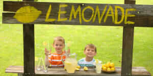 business_lessons_lemonade_stand